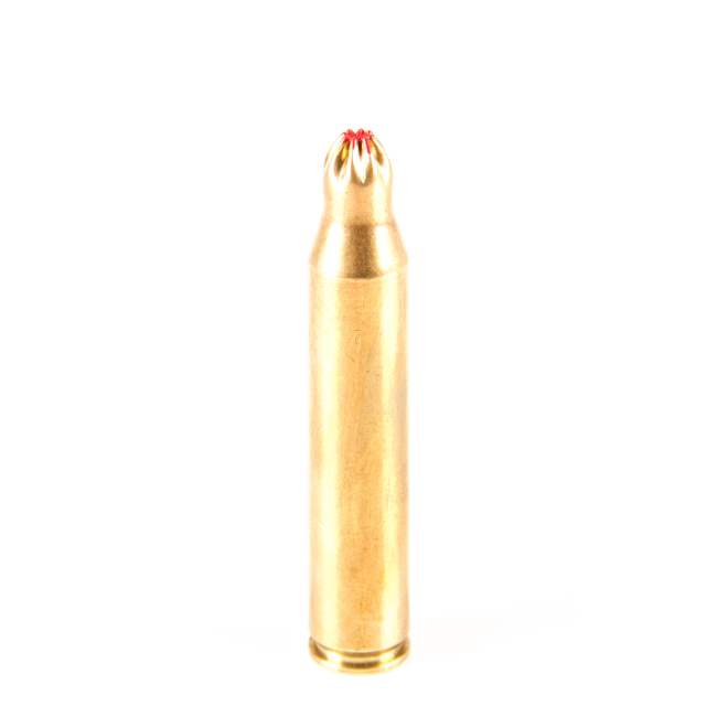 Expansion ammunition 270w blank weapons and ammunition for Amo manufacturing spain