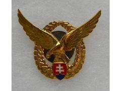 Pilot Badge Gold