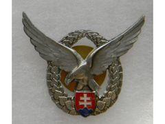 Pilot Badge silver