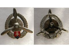 Badge Air Force technical staff, silver