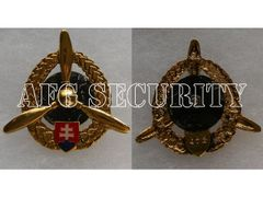 Badge Air Force technical staff, gold