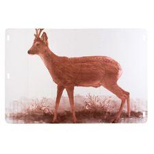 Cardboard target Roe deer 150x100 cm