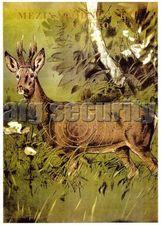 Hunting targets EU Deer